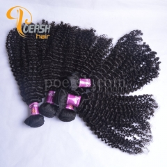 Poersh Hair 8A Unprocessed Raw Virgin Hair Top Quality 1B Natural Black Color Curly Wave 10Pcs/Lot Human Hair Weft